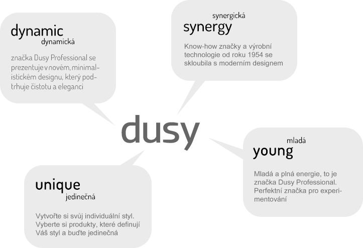 dusy-explain